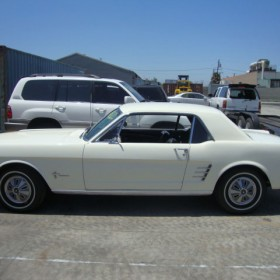 ford-mustang-weiss-17
